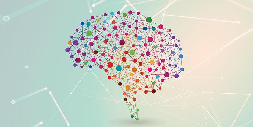 La rete dei servizi per le Malattie Neurodegenerative sul Territorio Pisano, Associazione La Tartaruga